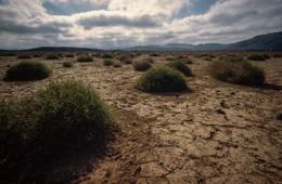 Africa;Desert;Deserts;Djibouti;Kaleidos;Kaleidos-images;Landscapes;Tarek-Charara