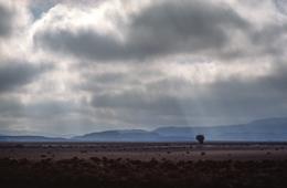 Africa;Clouds;Desert;Deserts;Djibouti;Kaleidos;Kaleidos-images;Landscapes;Tarek-Charara