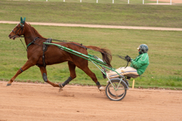 Domaine-de-Grosbois;Drivers;French-Trotters;Grosbois;Harness-racing;Horse;Horses;Kaleidos;Kaleidos-images;Marolles-en-Brie;Sulkies;Sulky;Tarek-Charara;Toni-Ripoll;Trot;Trotters;Trotting
