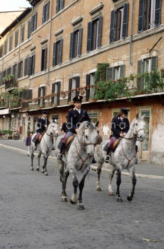 cheval;cavalo cavalos;cavallo cavalli;caballo caballos;Pferdepferd;horse horses;cheval chevaux;Reiter;cavaleiro;cavaliere;jinete;rider;cavalier;polícia;poliziotto;policía;police officer;Polizeibeamter;policier