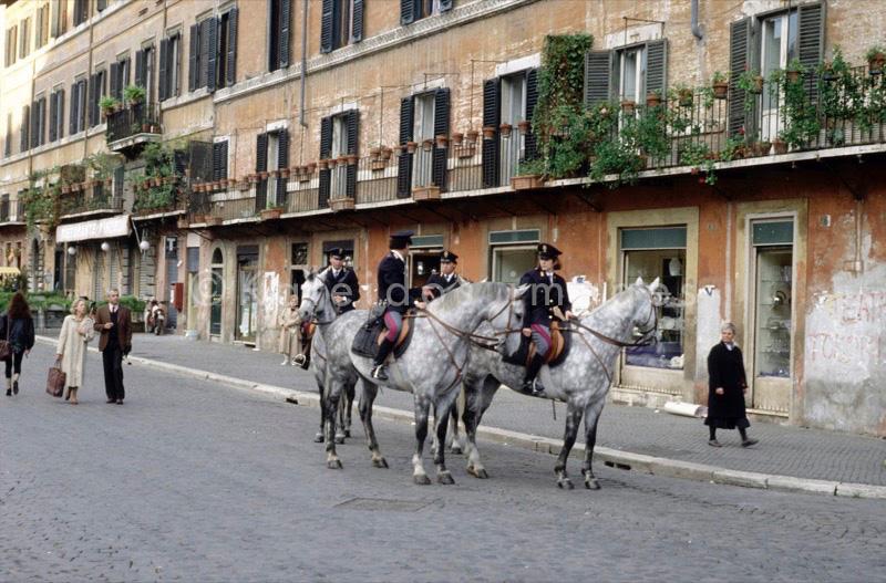 cavalo cavalos;cavallo cavalli;caballo caballos;Pferdepferd;horse horses;cheval chevaux;Reiter;cavaleiro;cavaliere;jinete;rider;cavalier;polícia;poliziotto;policía;police officer;Polizeibeamter;policier