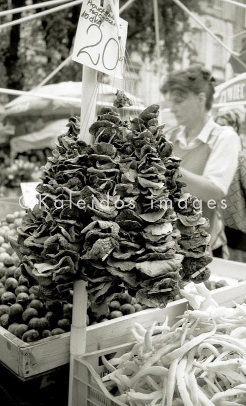 wild Polish mushrooms;mushrooms;Stary Kleparz Market;Polish Market;Cracow;Krakow;Poland;POL;Cracovie;Lesser Poland;Kleinpolen;Petite Pologne;Krakau