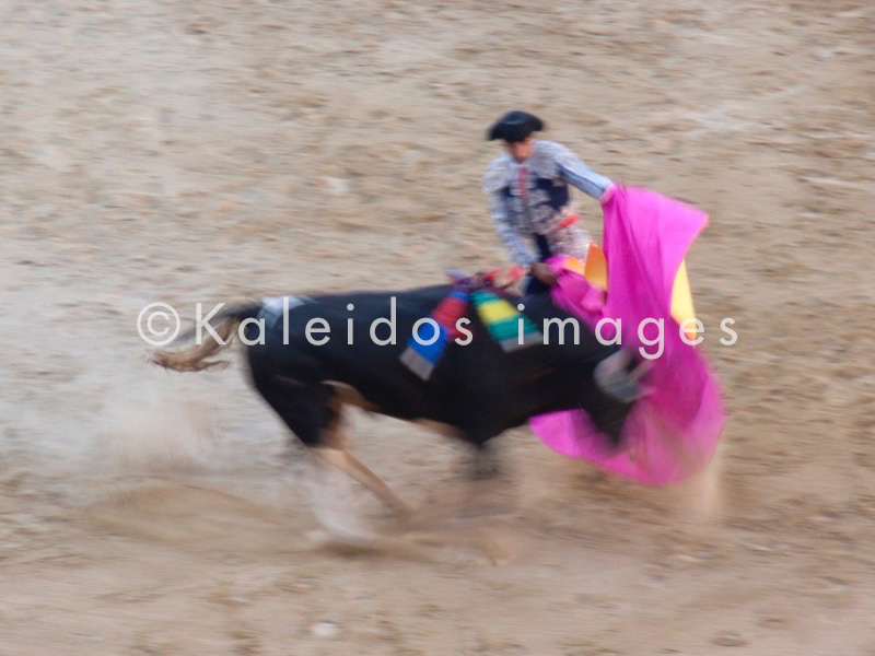 arène;bullfight;corrida;taureau;passes de capote;Espanha;Spanien;España;Spagna;Spain;Espagna;Espagne;arènes;arenas;arena;touro;Stier;toro;bull;combattimento;combate;Kampf;fights;combat;bullfighter;torero;picador;banderillero;matador;corridas;tauros;rejoneador;tauromaquia;bullfighting;Stierkampf;tauromachie;corni;cuernos;horns;Hörner;chifres;cornes;banderilles;banderillas;banderilleros;peones;picadors;bovino;vacuno;bovine;rinderähnlich;bovin;Pferd;horse;caballo;cavallo;cavalo;cheval;toréador;toreador;Espana;feria