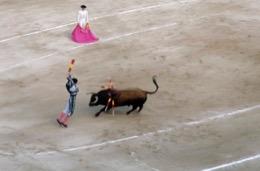 arène;bullfight;corrida;taureau;Espanha;Spanien;España;Spagna;Spain;Espagna;Espagne;arènes;arenas;arena;touro;Stier;toro;bull;combattimento;combate;Kampf;fights;combat;bullfighter;torero;picador;banderillero;matador;corridas;tauros;rejoneador;tauromaquia;bullfighting;Stierkampf;tauromachie;corni;cuernos;horns;Hörner;chifres;cornes;banderilles;banderillas;banderilleros;peones;picadors;bovino;vacuno;bovine;rinderähnlich;bovin;Pferd;horse;caballo;cavallo;cavalo;cheval;toréador;toreador;Espana;feria